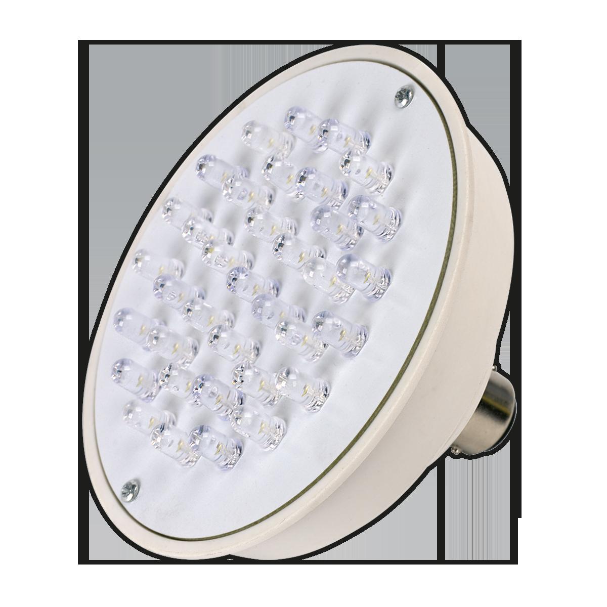 Bulb Unit 36 LED for ML2502 & ML24 Series Lamps 12V